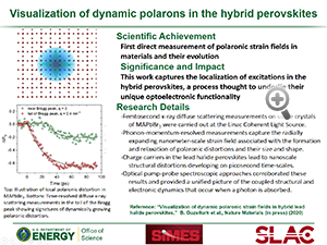 "Highlight entitled ""Visualization of dynamic polarons in the hybrid perovskites"" from paper in Nature Materials from Professor Aaron Lindenberg and  his group"